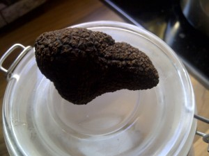 Another angle of the truffle