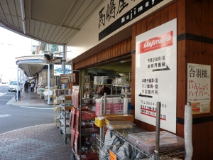 some of the shops along Kappabashi Dori, Asakusa