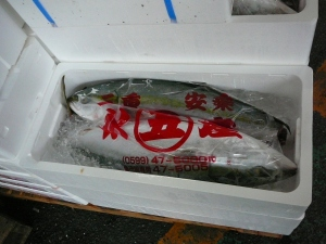 Fish wrapped and iced for delivery