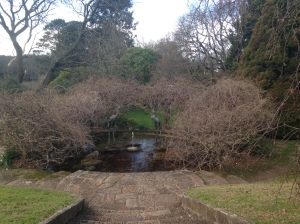 One of the ponds in the gardens
