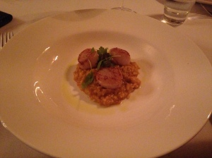 Saffron risotto with seared scallops