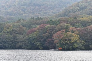 Torii, Lake Ashi