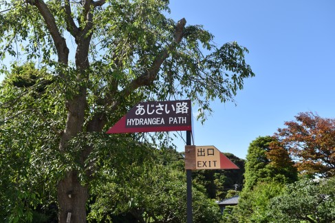 Sign post for the Hydrangea Path, Hase Dera