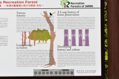 Forest history